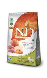 Farmina N&D Dog GF Pumpkin Boar & Apple Adult Mini беззерновой корм для взрослых собак малых пород, кабан с яблоком и тыквой