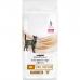 Купить Pro Plan Veterinary Diets NF (Renal Function) корм для кошек при хронической болезни почек с доставкой по г. Бишкек
