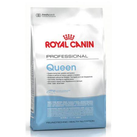 Royal Canin QUEEN PRO сухой корм для беременных и кормящих кошек