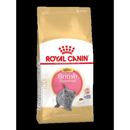 Royal Canin BRITISH SHORTHAIR KITTEN сухой корм для британских короткошерстных котят в возрасте до 12 месяцев