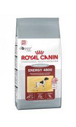 Royal Canin ENERGY 4800 сухой корм для взрослых собак, подверженных интенсивным длительным нагрузкам.