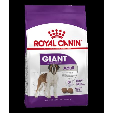 Royal Canin GIANT ADULT сухой корм для взрослых собак очень крупных размеров в возрасте старше 18/24 месяцев