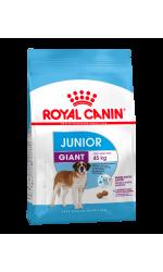 Royal Canin GIANT JUNIOR корм для щенков собак очень крупных размеров в возрасте с 8 до 18/24 месяцев.