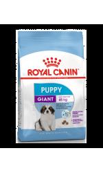 Royal Canin GIANT PUPPY корм для щенков собак очень крупных размеров в возрасте с 2 до 8 мес.