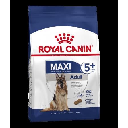 Royal Canin MAXI ADULT 5+ сухой корм для стареющих собак крупных размеров в возрасте от 5 до 8 лет.