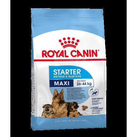 Royal Canin MAXI STARTER для собак крупных размеров в период беременности и лактации, а также для щенков в возрасте до 2 мес.